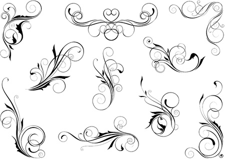 Swirl floral set  Vector