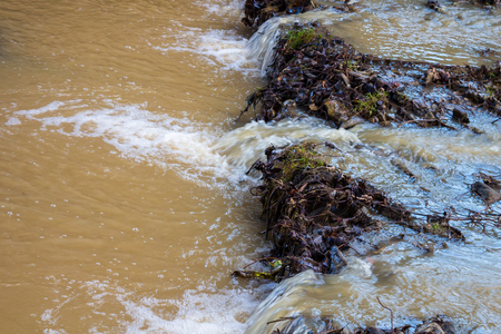 raging: Raging mountain  river running down the hills