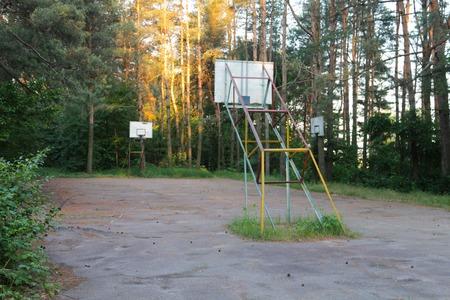 naranja arbol: vac�o de baloncesto en la madera en verano