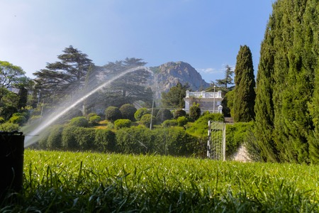 watered: View of the beautiful manicured green lawn that is watered