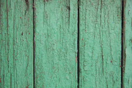 squalid: Green peeling paint on an old wooden background texture
