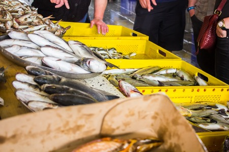 whitebait: a lot of different fish on the shelves at the fish market Stock Photo