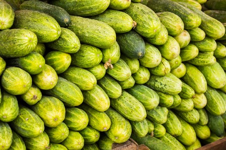 Big juicy ripe cucumbers in a pile on the counter market Banque d'images