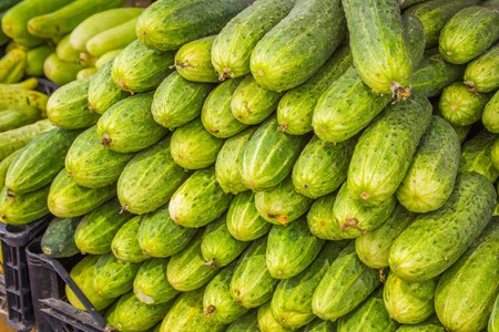 full willow: Big juicy ripe cucumbers in a pile on the counter market Stock Photo