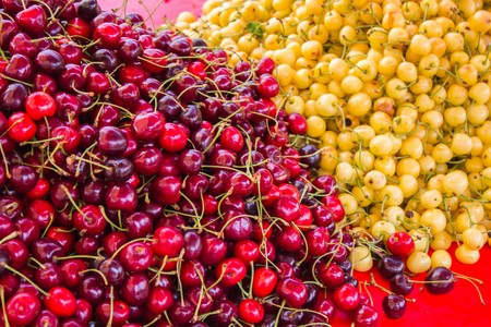 Big juicy ripe delicious sweet cherries next to other fruits are sold at the counter Banque d'images