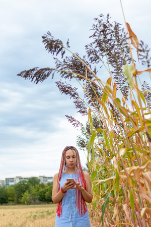 Woman with african pigtails using smartphone at sorghum field