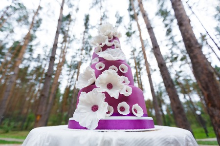 sugar paste: Grand violet wedding cake with white sugar paste flowers