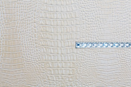 snakeskin: Crocodile skin white leather texture background with jewels line Stock Photo