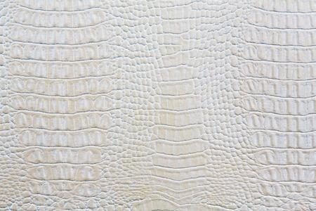 Crocodile skin white leather texture background