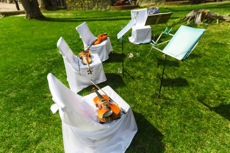 violins: Outdoors wedding ceremony begins - string quartets decorated festive chairs with violins Stock Photo