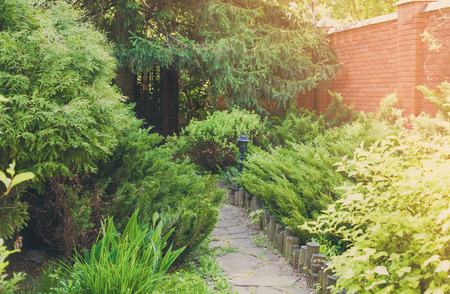 flower garden path: Beautiful landscape design, garden path with wooden fence, evergreen bushes, fir trees, spruces and shrubs in sunlight Stock Photo