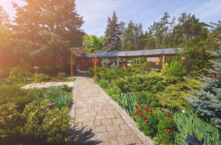 flower garden path: Beautiful landscape design, garden path with stone tiles, evergreen bushes, fir trees, blue spruces and shrubs in sunlight. Stock Photo