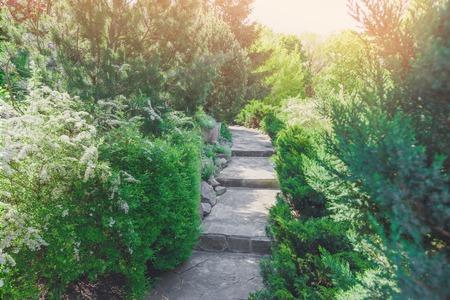 flower garden path: Beautiful landscape design, garden path with staircase in stone tiles, evergreen bushes, fir trees, blue spruces and shrubs in sunlight. Modern landscaping. Summer garden or park design.