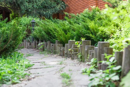 flower garden path: Beautiful landscape design, garden path closeup with wooden log fence from roundwood and evergreen bushes in sunlight
