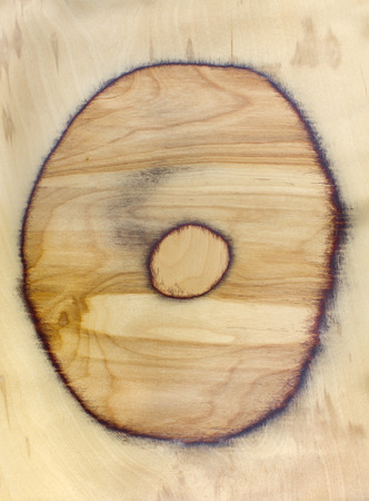 duramen: Heartwood texture background. Natural wooden circular cross section round shape surface.