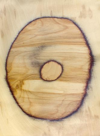 duramen: Textura del fondo de duramen. la sección transversal circular superficie de forma redonda de madera natural.