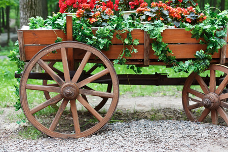 cranesbill: The cart with flowers. Scarlet red geranium flowerbed in retro styled old wooden wagon. Cranesbill in park landscape design, modern landscaping