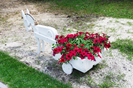flowerbed: Flowerbed cart with bright pink flowers. White wood decorative wagon with small pony horse and petunias. Modern garden decoration.