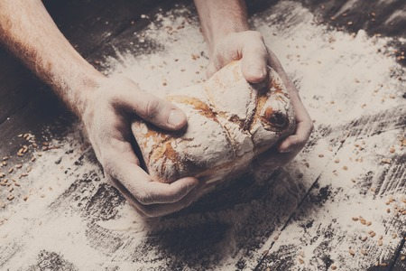 carefully: Warm fresh bread. Baking and cooking concept background. Hands of baker carefully hold loaf on rustic wooden table, sprinkled with flour. Stained dirty hands of cook. Soft toning