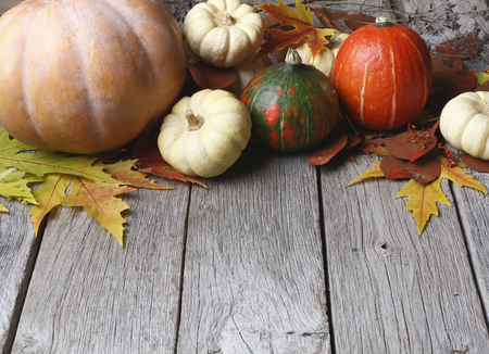 Autumn Harvest And Thanksgiving Card Background Various Pumpkins Leaves On Weathered Rustic Wood