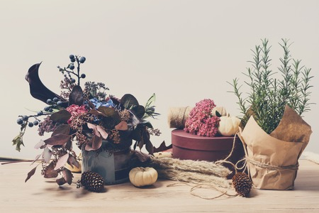 floristic: Beautiful autumn composition of dried meadow flowers and leaves, flower pot with rosemary. Floral fall background. Floristic art decorations.