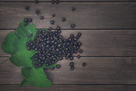 Fresh black currants on rustic wood background. Natural organic berries with green leaves scattered on weathered grey wooden table, dark filter Imagens - 78406424