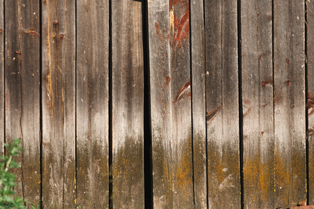 Wood planks. Old wooden fence texture background. Timber hardwood wall. Stock Photo