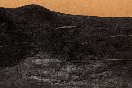 Burnt wood black background. Surface of charcoal. Charred tree texture Stock Photo