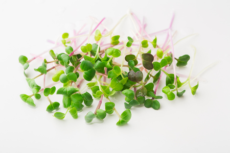 Micro greens sprouts isolated on white background. Healthy eating, fresh organic produce and restaurant servind concept. Top view on watercress, copy space