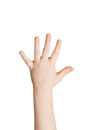 Kid hand shows number five isolated. Child palm gesturing high five sign. Counting, enumeration, white studio background.