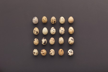 Quail eggs arranged in square, top view. Minimalistic design for easter greeting card or mockup for organic farm advertisement, copy space Banco de Imagens