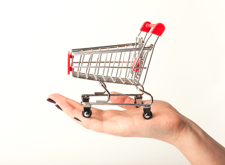 Woman hand holding empty shopping cart isolated on white background, side view. Advertising of food products and clothing. Shopping concept Stock Photo