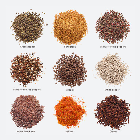 Different spices with names isolated on white background