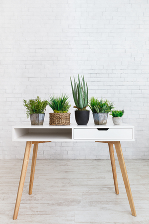 Houseplants in various pots on table against white brick wall, empty space