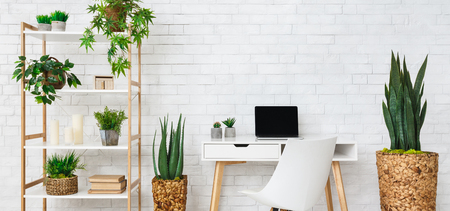 Modern home work place with laptop, and house plants on rack at white brick wall background 免版税图像