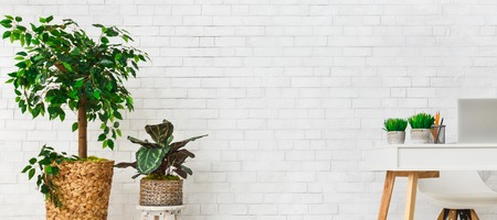 Modern work place with house plants on white brick wall background. Minimalistic creative space concept, copy space