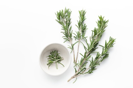 Fresh green sprigs of rosemary on white background