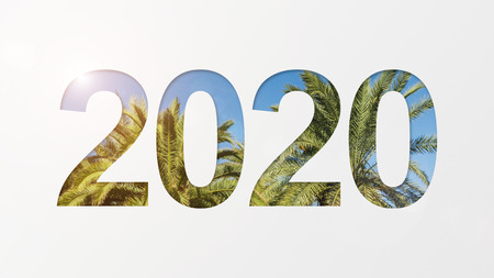2020 year number over palm trees and blue sky background