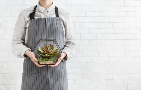 Woman holding succulent garden in geometric glass florarium vase at white brick wall, copy space. Gardening service concept