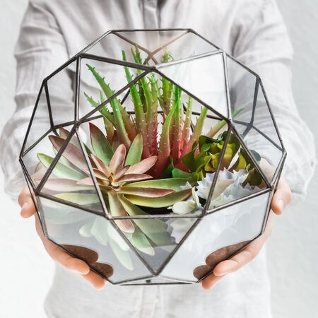 Woman holding glass florarium vase with mini succulent garden, close up. Make your home green concept
