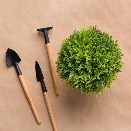 Tiny gardening tools and mini plant on craft paper Stockfoto