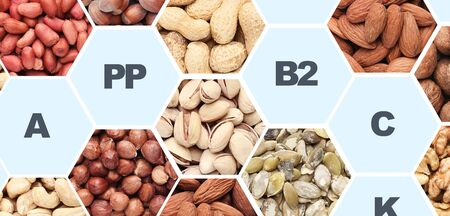 Fractional nutrition. Different Nuts in frames full of vitamins and healthy elements on background, panorama