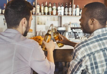 Back view of two multiracial guys drinking beer together in bar, free space