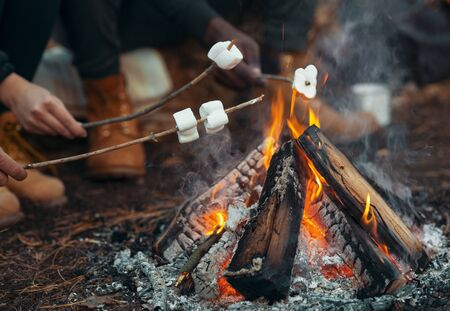 Camping and picnic concept. Close up of people frying marshmallow on fire in forest Banco de Imagens
