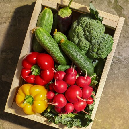 Collect your vitamins for winter. Fresh Vegetables in sun lights in eco wooden box on concrete floor