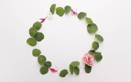 Creative microgreen. Wreath of seedlings and small rose isolated on white background, copy space Archivio Fotografico