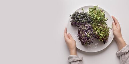Plant food. Woman holding plate with microgreens for diet nutrition, panorama, copy space Imagens