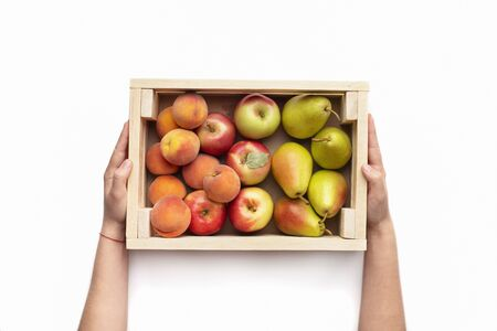 Tasty present. Garden fruits in eco wooden box in wman hands isolated on white background, copy space