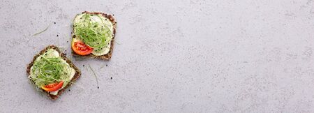 Vegan toasts of wholegrain bread with tofu, microgreens and tomato ob grey concrete table, panorama with empty space