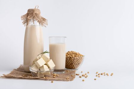Asian dairy swaps. Soybean milk, tofu cheese and beans on white studio background, free space